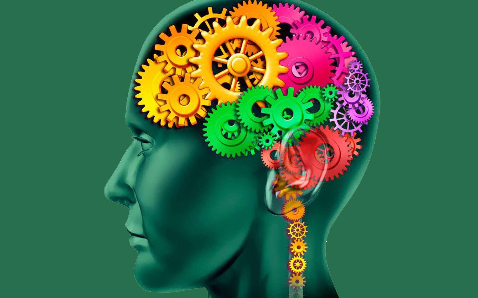 7 choses que les étudiants devraient faire pour améliorer la mémoire